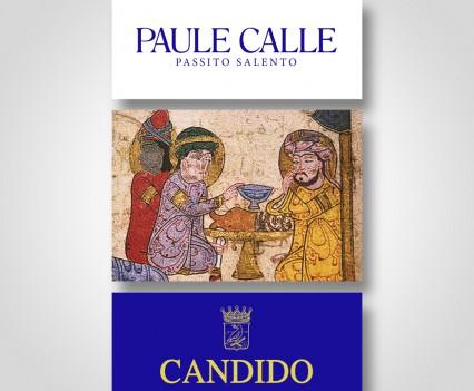 """New look """"Paule Calle"""""""