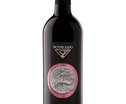 Still-life vino